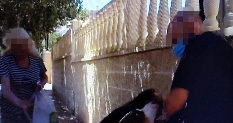 La Policía Local de Alicante detiene a un hombre por un presunto delito de exhibicionismo