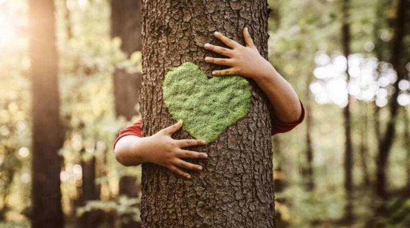 10 apps para ayudarte a llevar una vida más sostenible